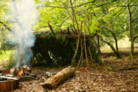 Survie d'automne en forêt